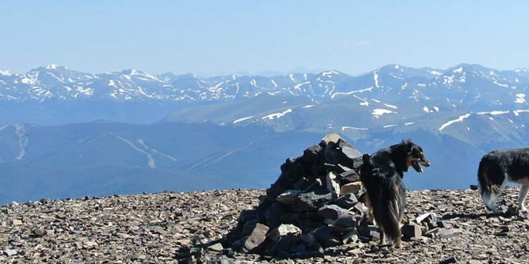 Bald Mountain via Boreas Pass