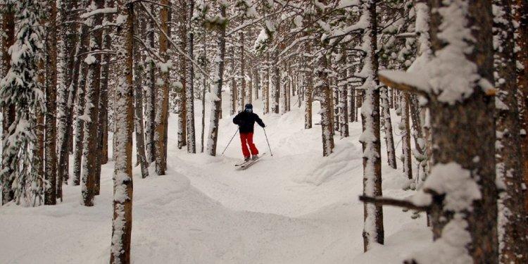 Tree skiing at Breckenridge